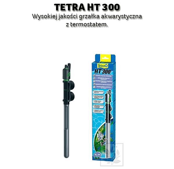 Grza ka tetra ht 300 for Garden idea ht 450