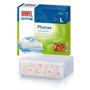 Phorax L 6.0 Standard Juwel