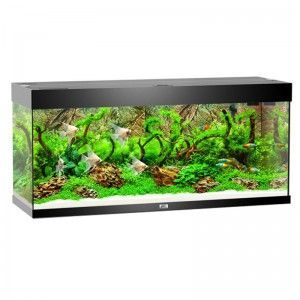 Akwarium Rio 240 kolor czarny Juwel
