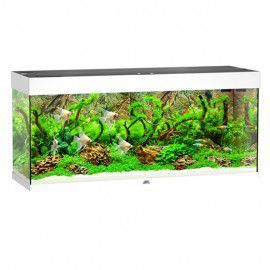 Akwarium z wyposażeniem Rio 240 kolor biały Juwel
