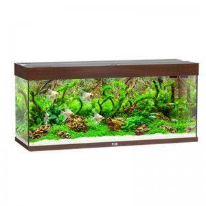 Akwarium z wyposażeniem Rio 240 kolor ciemne drewno Juwel