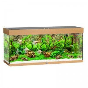 Akwarium z wyposażeniem Rio 240 kolor buk Juwel