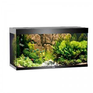 Akwarium z wyposażeniem Rio 300 kolor czarny Juwel
