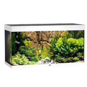 Akwarium z wyposażeniem Rio 300 kolor biały Juwel