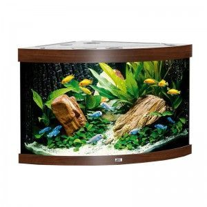 Akwarium (narożne) Trigon 190 kolor ciemne drewno Juwel