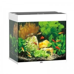 Akwarium z wyposażeniem Lido 120 kolor buk Juwel