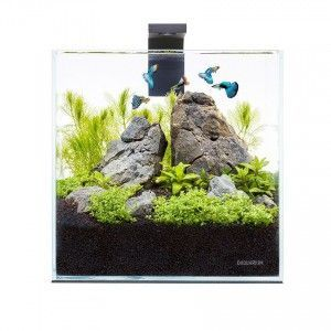 Zestaw akwariowy Pico Set 5L AquaLighter