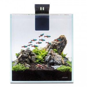 Zestaw akwariowy Nano Set 10L AquaLighter