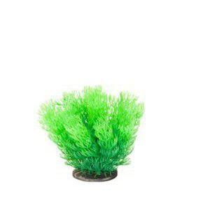 Roślina Premium Mini RP 203 ATG Line
