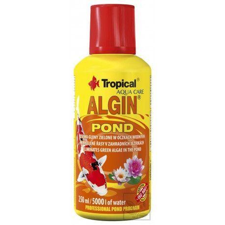 Tropical Algin Pond [2l]