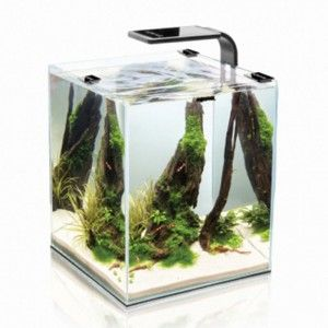 Zestaw akwariowy Aquael Shrimp Set Smart 10 Black