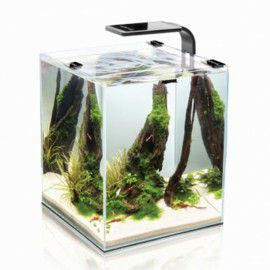 Zestaw akwariowy Aquael Shrimp Set Smart 10 White