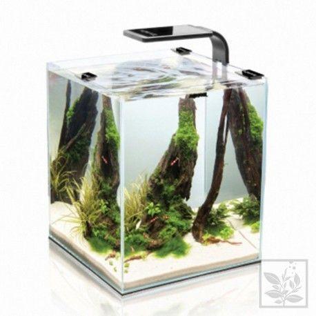 Zestaw akwariowy Aquael Shrimp Set Smart 10 White
