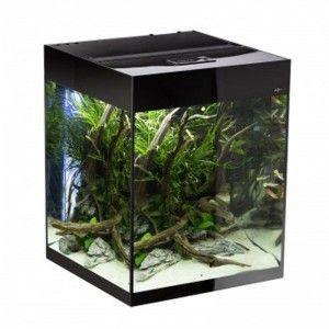 Glossy Cube zestaw akwariowy Aquael