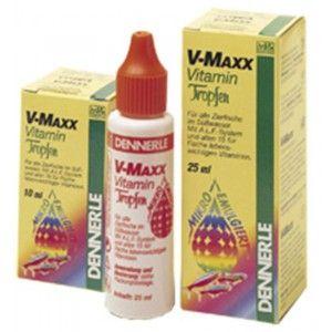 V-Maxx 10ml Dennerle