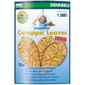 Catappa Leaves Tropical almond leaves Dennerle