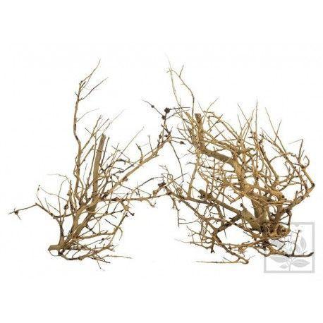 ProGrow Deco Branch Wood 0,1 kg