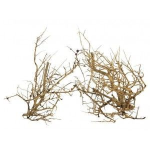 ProGrow Deco Branch Wood 0,1 kg