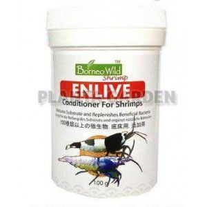 BORNEOWILD SHRIMP ENLIVE 100g