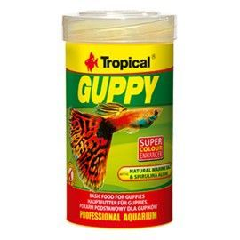 Guppy 100ml Tropical