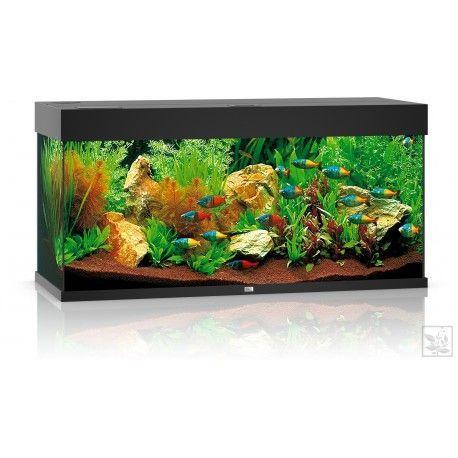 Akwarium z wyposażeniem Rio 180 kolor czarny Juwel