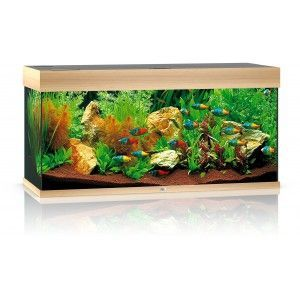 Akwarium z wyposażeniem Rio kolor buk Juwel