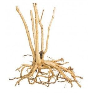Tree Wood ProGrow 1KG