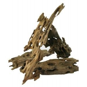 Dragon Wood 1kg