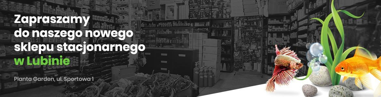 Nowy sklep stacjonarny w Lubinie