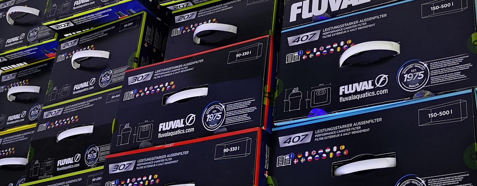 Filtracja w akwarium czyli jaki filtr wybrać do akwarium?